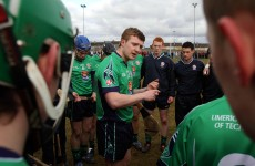Hickey, Canning and Shefflin honoured in Fitzgibbon centenary team