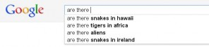 While uses of Google.com are somewhat worried about whether or not St. Patrick did his job with the snakes....