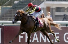 Solemia springs huge surprise by beating Orfevre at Longchamp