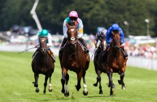 The Magnificent Seven: flat racing's all-time greats