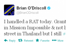 Tweet Sweeper: Brian O'Driscoll is scared of small furry animals