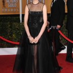 Here's golden girl Anne Hathaway. She appears to be wearing a see-through dress over a plastic dress.