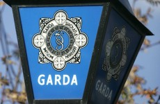 Gardaí renew appeal over body found in Kilkenny