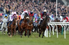 Thursday at Cheltenham: 5 things to say when the office chat turns to racing today