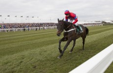 Believe the hype: here's why punters will pack into Punchestown to see Sprinter Sacre