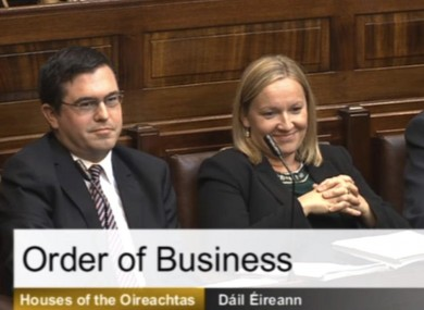 Terence Flanagan, Lucinda Creighton and Billy Timmins in the Dáil this week