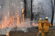 Firefighters deliberately merge two blazes in Australia