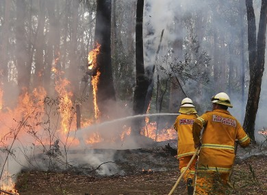 A firefighter tries to control flames near houses at Bilpin, 75 kilometres west of Sydney.