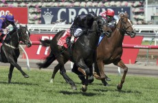 Simenon fourth as favourite Fiorente wins Melbourne Cup