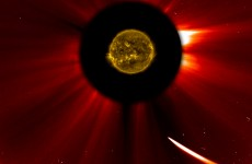 Comet ISON may have survived its brush with the sun
